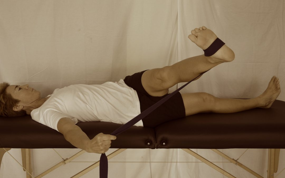 Low Back Pain Course Overview